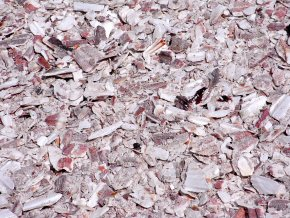 Crushed scallop shells (Great for pathways or driveways. Compacts like scalpings)
